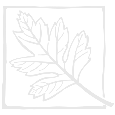 Aluminium Circle 300mm Diameter 1 mm thick