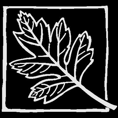 Letterpress Tangerine 225gm